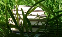 Foto_boeken in gras